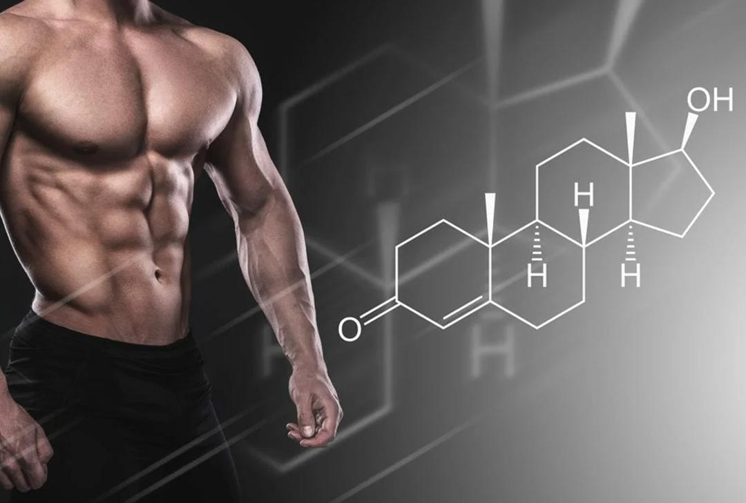 Эффективность тренировок и быстрое восстановление - преимущества спортивного питания