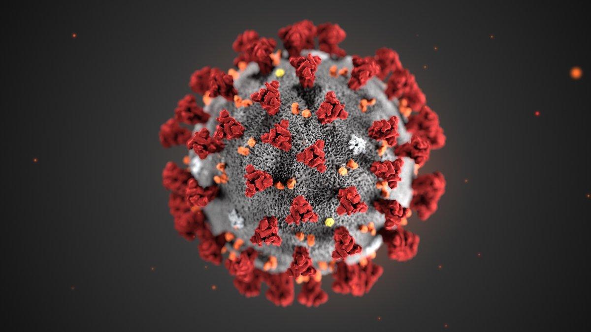 Это аллергия, грипп или коронавирус?